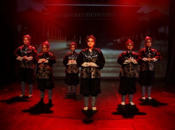 Dani plesa - Slavuj, plesna predstava 04