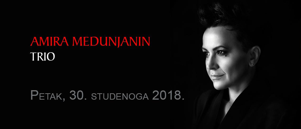201811-Amira-Medunjanin